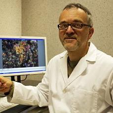 Josep Trigo-Rodriguez