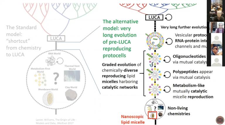 Reproducing catalytic micelles as early nanoscopic protocells harboring dynamic lipid aptamers (Doron LANCET)